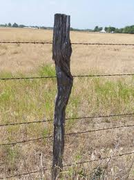 fence post that has a purpose